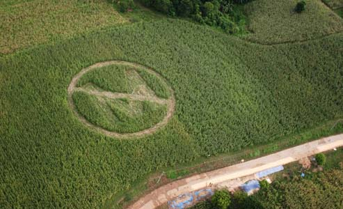 Local Farmers create an anti-Monsanto symbol on their crops